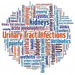 Elderly Care in Glendale AZ: What Are the Signs and Symptoms of Urinary Tract Infections for Seniors?