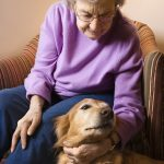 Elderly Care in Sun City West AZ: Helping Your Mom's Pet Acclimate to Someone New in the House
